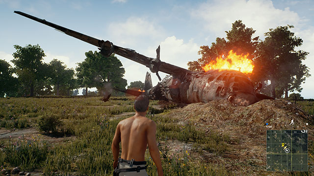 In-Game Screenshot of PUBG crashed, burning plane