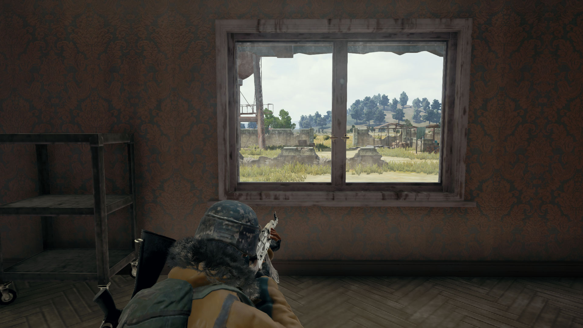 PUBG Player Looking at Window